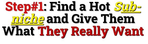find a profitable sub-niche